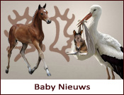 baby_nieuws width=